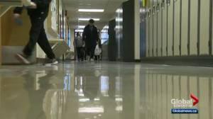 UCP might debate school voucher system idea