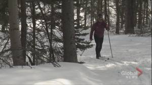 'Sad news for us in Kananaskis': Cross-country skiers upset with provincial plan to stop grooming trails