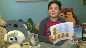 Fredericton boy raising money for Australia's koalas