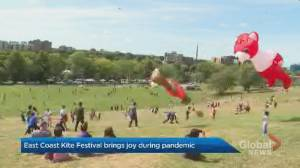 Hundreds attend East Coast Kite Festival, bringing joy during COVID-19 pandemic (01:40)