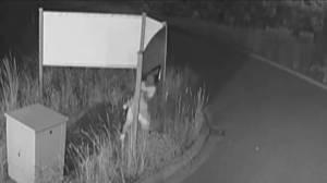 Men caught on surveillance video destroying realtor's sign (01:55)