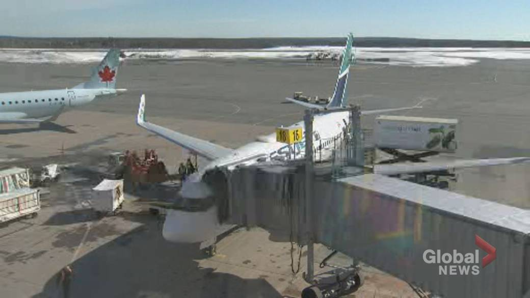 Click to play video 'WestJet cutting over 100 flights in Atlantic Canada as pandemic makes service 'unviable''