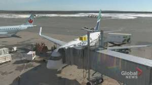 WestJet cutting over 100 flights in Atlantic Canada as pandemic makes service 'unviable' (02:00)