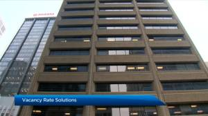 New School of Public Policy report examines Calgary's office vacancy rate (02:05)
