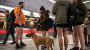 GNM looks at International No-Pants Day