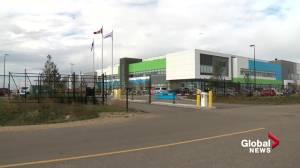 Aurora Cannabis to close facility south of Edmonton (01:59)
