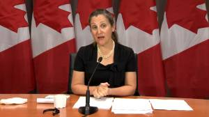 Freeland says retaliatory tariffs looking to have the 'strongest possible impact' on the U.S.