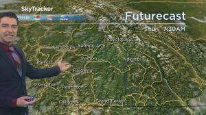 Kelowna Weather Forecast: January 6 (03:26)