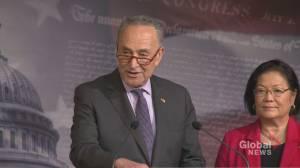 Schumer calls Dershowitz' public interest argument 'a load of nonsense'