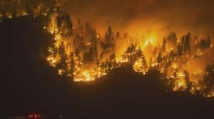 Wildfire causes and consequences (02:38)