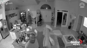 Hacker berates family with racial slurs through Ring security camera