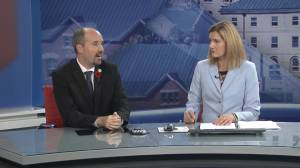 Kingston Mayor Bryan Paterson visits Global News Morning