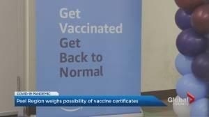 Peel Region's top doctor pushes Ontario to implement COVID-19 vaccine passport (01:43)