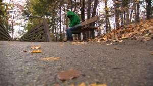 Attaining positive mental health for all Kingston residents ongoing battle