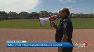 Brampton bylaw officer assaulted during coronavirus-related complaint