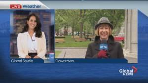 Global News Morning weather forecast: June 1, 2021 (01:17)