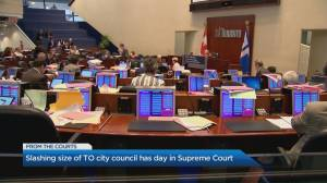 Doug Ford's decision to cut city council in half is appealed in Supreme Court (06:39)