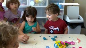 Maritime premiers to work out details over child care initiative (02:08)