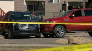 Man killed, driver arrested after pedestrian collision in northeast Calgary (01:40)