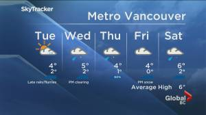 B.C. evening weather forecast: Jan. 25 (02:01)