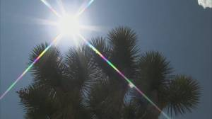 REPORT: Heat wave and fires driven by climate change. (02:04)