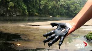 Indigenous leaders call for help to stop oil drilling in the Amazon