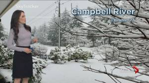 B.C. evening weather forecast: January 24 (02:33)