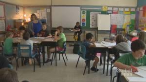 New Brunswick parents raising concerns about province's return to school plan (02:01)