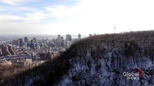 Montreal mayoral race heats up over preserving view of Mount Royal (01:57)