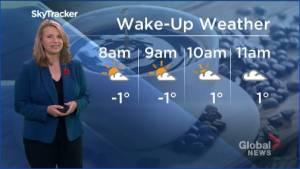 Peterborough Regional Weather Update: November 3, 2020 (02:29)