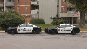Man found dead in east end is Hamilton's 8th homicide of 2019: police