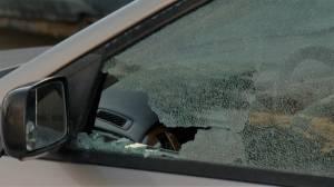 Vehicle vandalism spree in Coventry Hills
