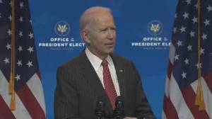 U.S. election: Biden says Trump's challenge to his election victory is 'incredibly irresponsible' (00:45)
