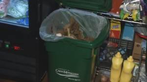 """Town of Millbrook's green bin pilot a """"success"""""""