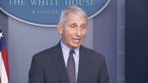 Coronavirus: Fauci says Biden administration not 'starting from scratch' on vaccine rollout (02:24)