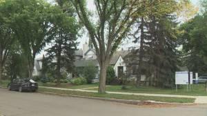 Edmonton's Glenora residents concerned about potential development
