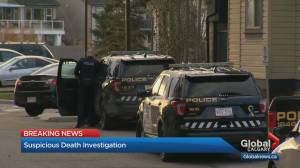 Calgary police investgate suspicious death in city's southeast (01:15)