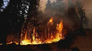 California's Dixie Fire balloons to largest wildfire in U.S. (01:44)