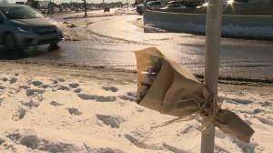 Small memorial left at deadly crash site near Calgary's Chinook Centre (01:27)