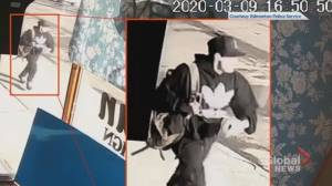 Edmonton police seek person of interest in McCauley area homicide