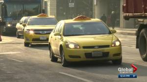 Taxi cab confessions: New book delves into drivers' surprising stories (04:05)