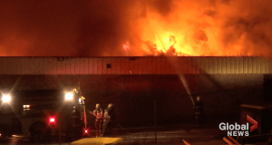 Fire destroys Sayers Foods grocery store in Apsley (01:23)