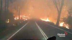 Currowan bushfire chokes major road on Australia's New South Wales south coast