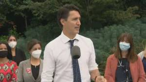 Liberals pledge to outlaw blocking access to health-care facilities (02:11)