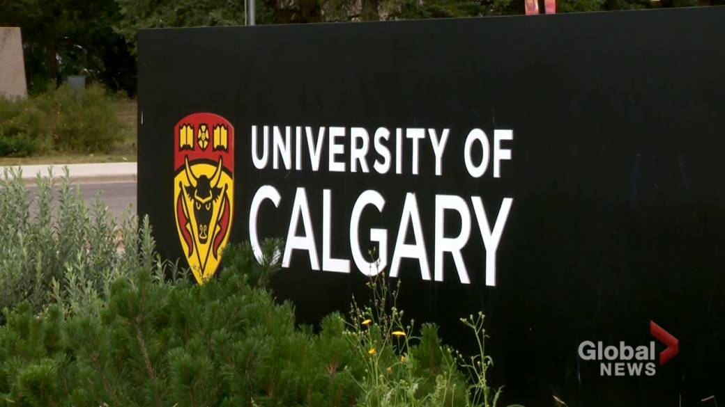 Click to play video: 'Students, faculty voice concerns over UCalgary return-to-campus plan'