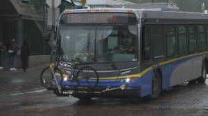 New report says TransLink buses delayed by traffic