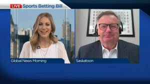 Saskatoon MP's bill for single-event sports betting passes milestone (03:39)