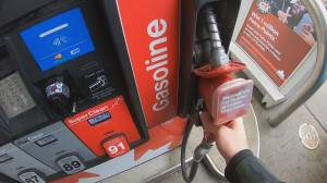 B.C.'s new gas price reporting rules take effect (01:07)