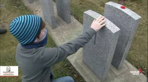 No Stone Left Alone: Children lay poppies on headstones of fallen Canadian soldiers