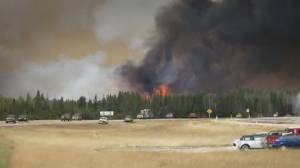 Canada unprepared for extreme weather events: report (02:27)